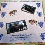 Buffalo Stampede Vacation Scrapbook Page 2