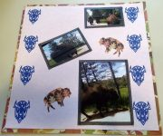 Scrapbook Page - The Buffalo Stampede