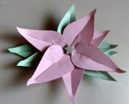 Paper Flower - the Poinsettia
