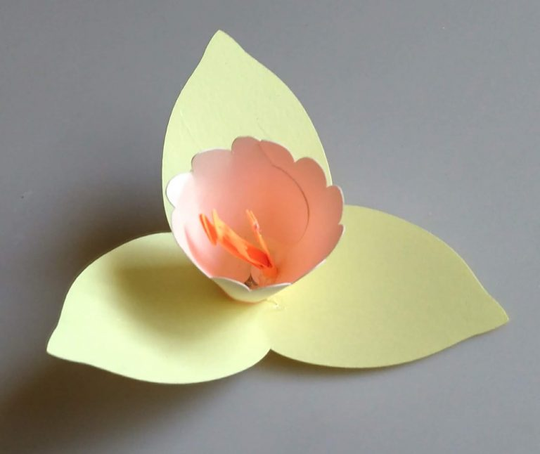 Another Daffodil paper flower