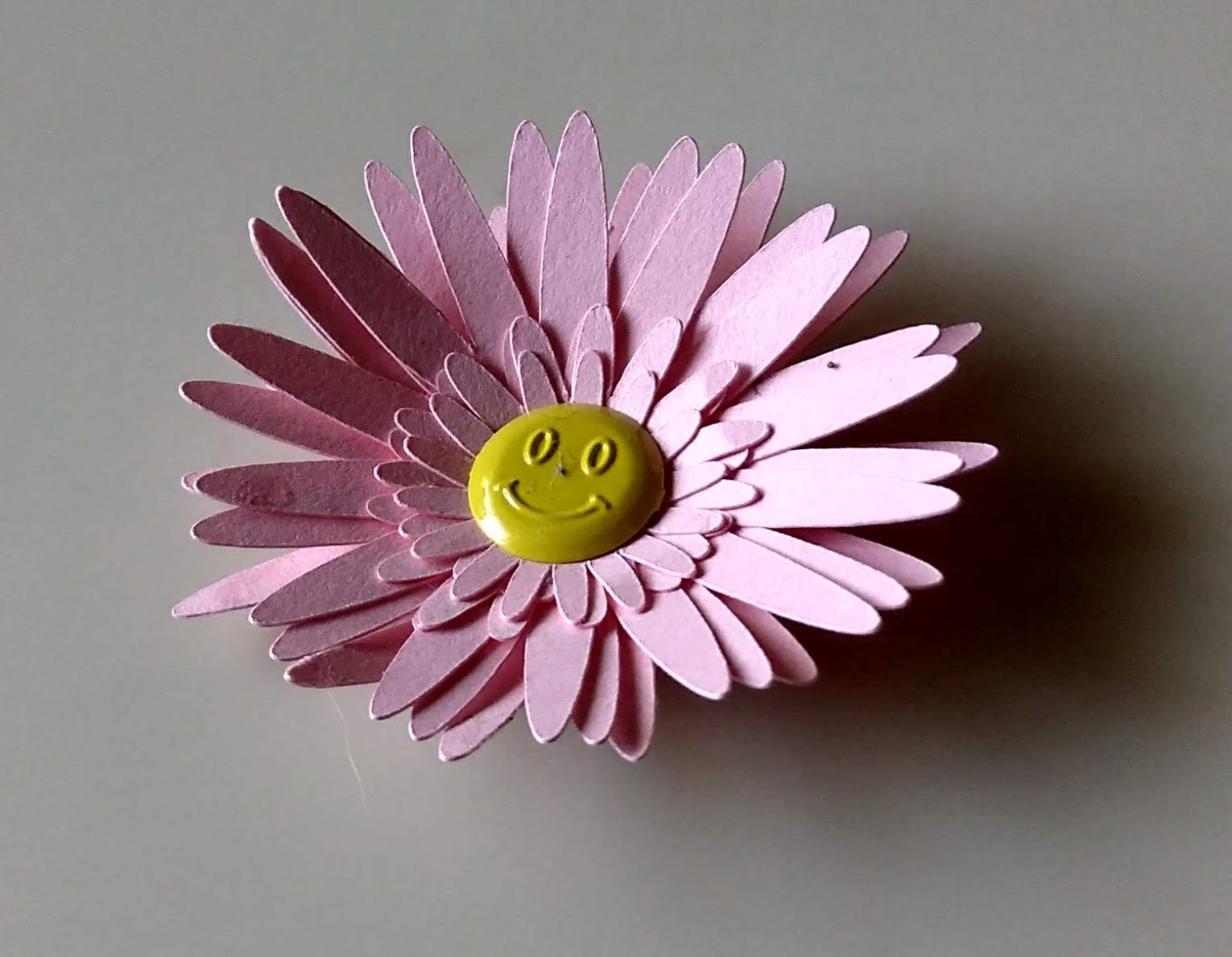 Paper Flowers - The Gerber Daisy