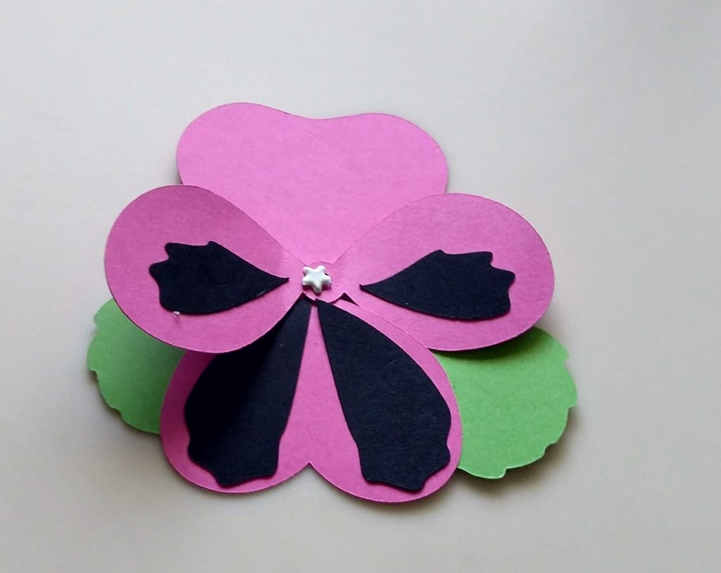Pink Paper Pansy