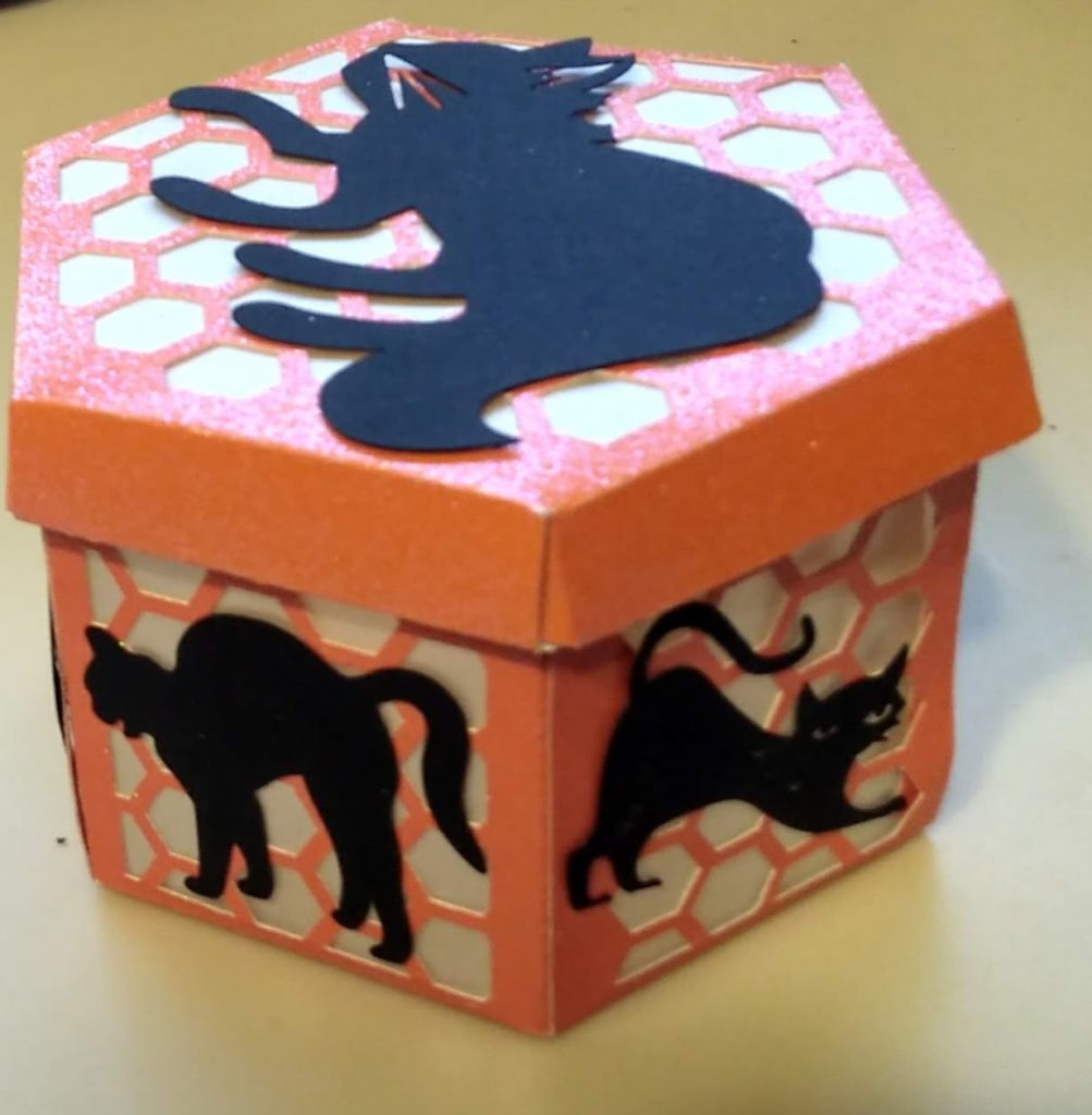 Cat Luminary Box