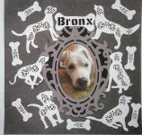 Bronx Fur Baby Scrapbook Page