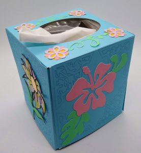 Spring tissue box cover full view with tissues