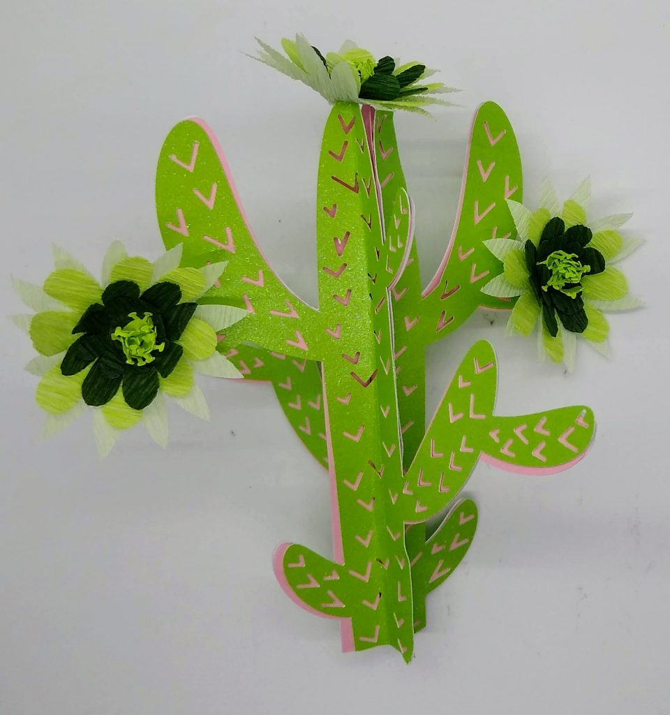 3D Cactus with Paper Cactus Flowers