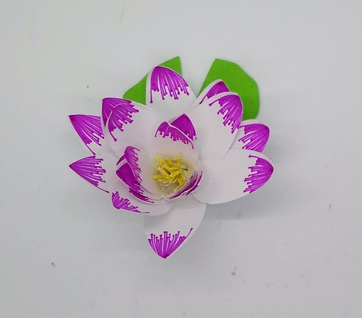 Make Paper Water Lily or Lotus Flowers