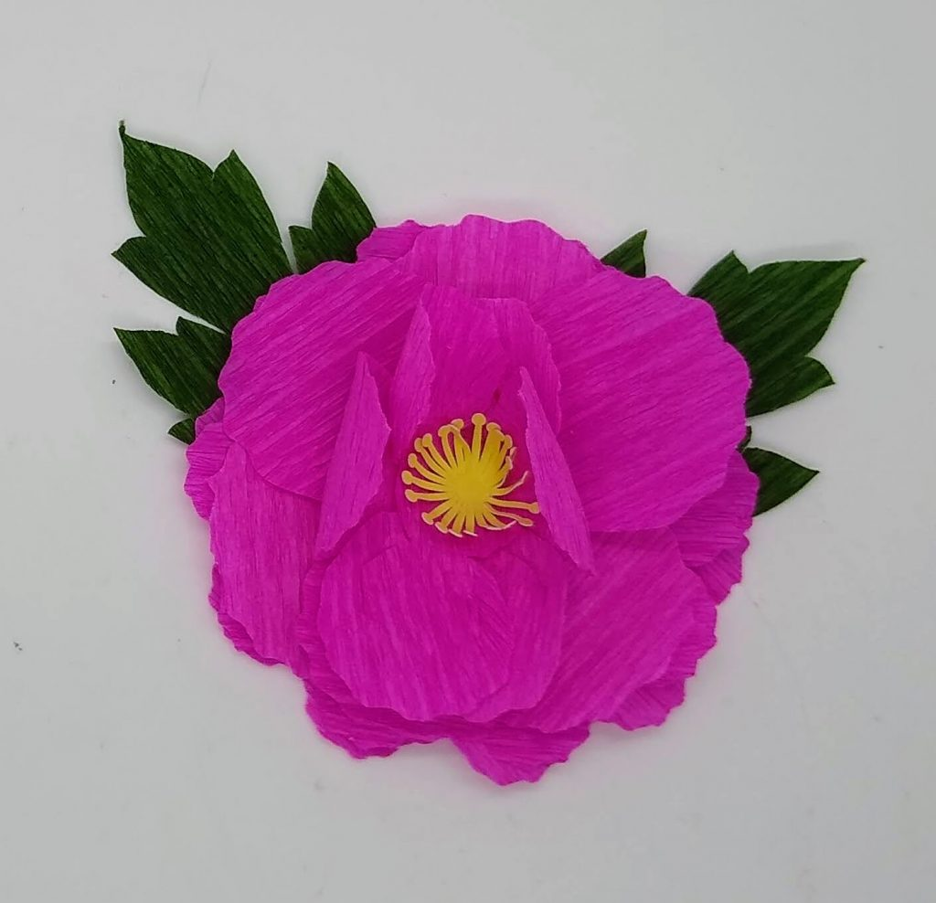 The pink crepe paper peonies made in pink