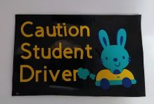 Have A Student Driver?  You Need These Magnets!
